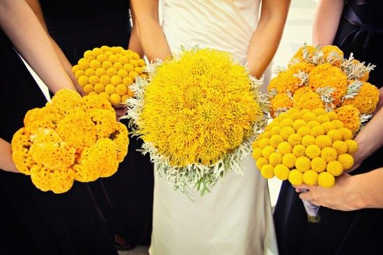 Yellow flowers jacksonrice wedding tailgating for love yellow flowers mightylinksfo