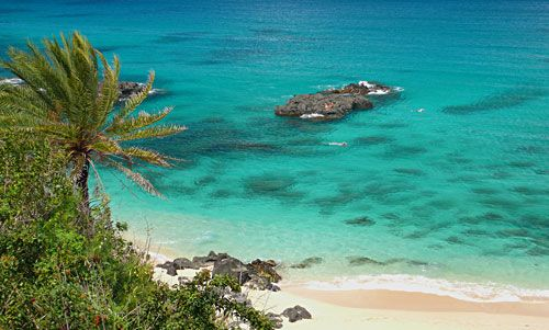 Complete Oahu Snorkeling Guide Recommended Spots Tours