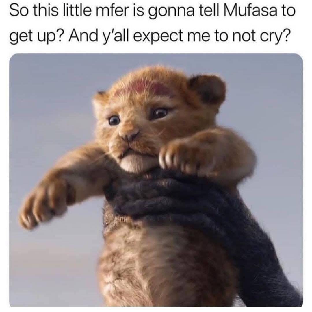 Pin By Kate Frank On Memez For Dayz Disney Memes Funny Memes Lion King Meme