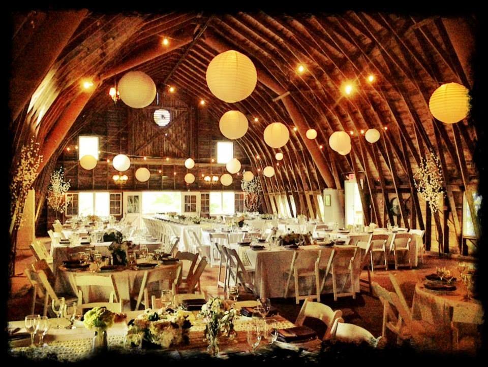 Blue dress barn wedding places barn wedding blue dresses