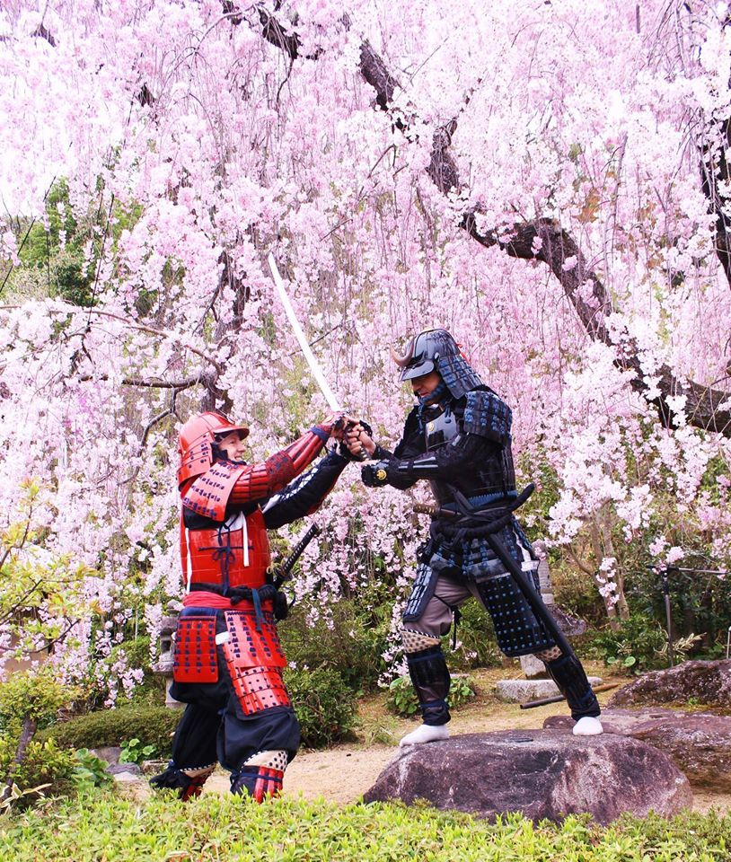 Under blossoms Martial arts, Soke, Martial