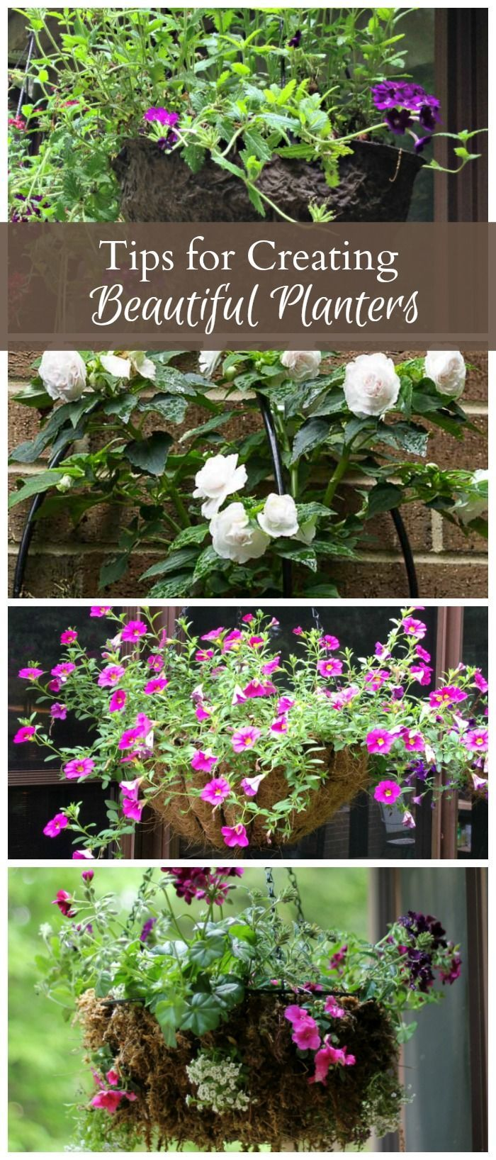 5 Simple Tips To Create Beautiful Hanging Flower Containers is part of Container flowers, Garden containers, Garden inspiration, Container gardening, Plants, Diy garden - Learn five different tips on how you can create beautiful hanging flower containers that will bloom and thrive all season long