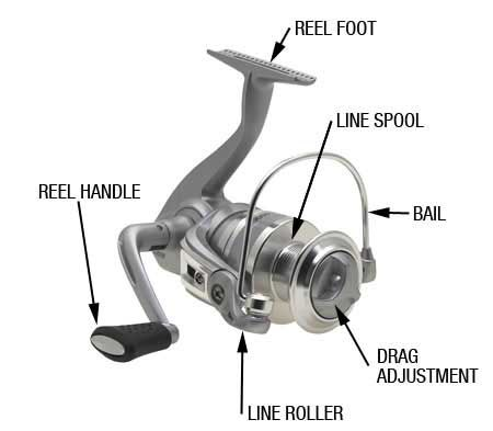 Spinning reel parts | fishing | Spinning reels, Fishing reels, Fish
