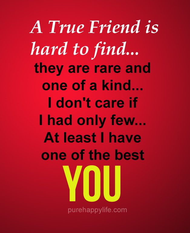 Motivational Quotes Friendship: A True Friend Is Hard To Find...more On