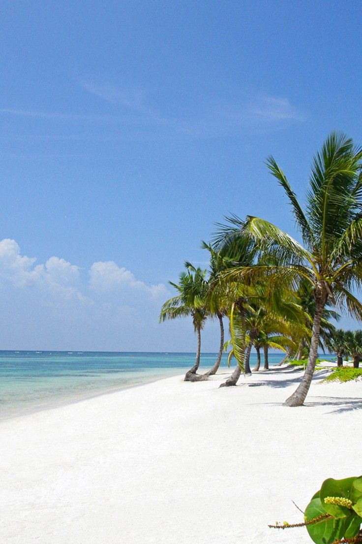 Tortuga Bay Hotel Punta Cana Dominican Republic Reizen Dominicaanse Republiek Eiland