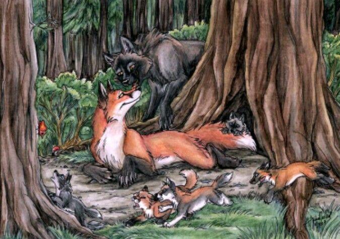 картинки лисы с лисятами от волка паразитирование вредителя провоцирует