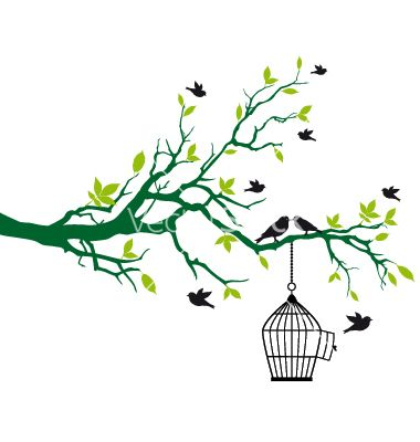 tree branch with birds and birdcage vector image on | street art