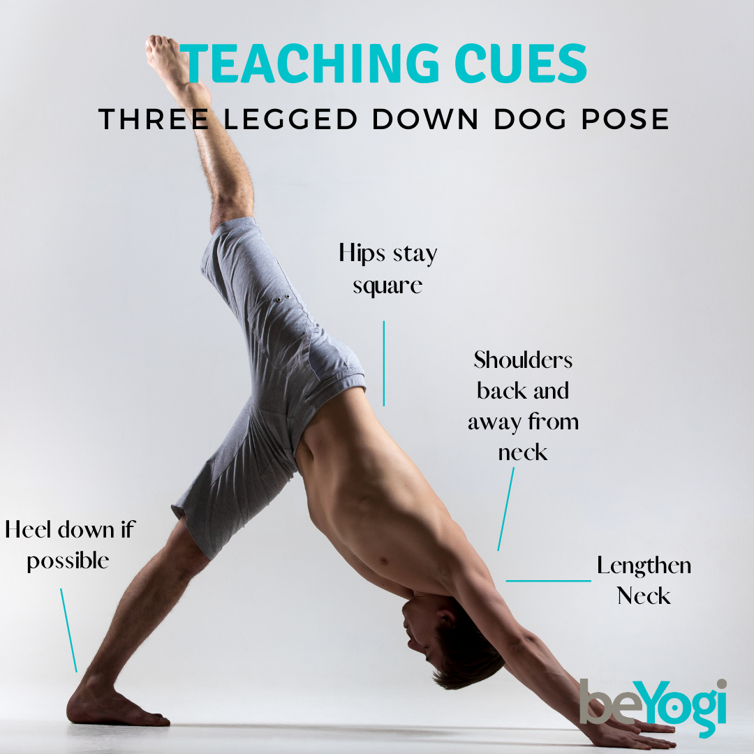 Cues For Your Students To Ensure 3 Legged Downward Dog Is Done Properly Share This With Your Students Bridgepos Yoga Insurance Yoga Tutorial Yoga Teachers