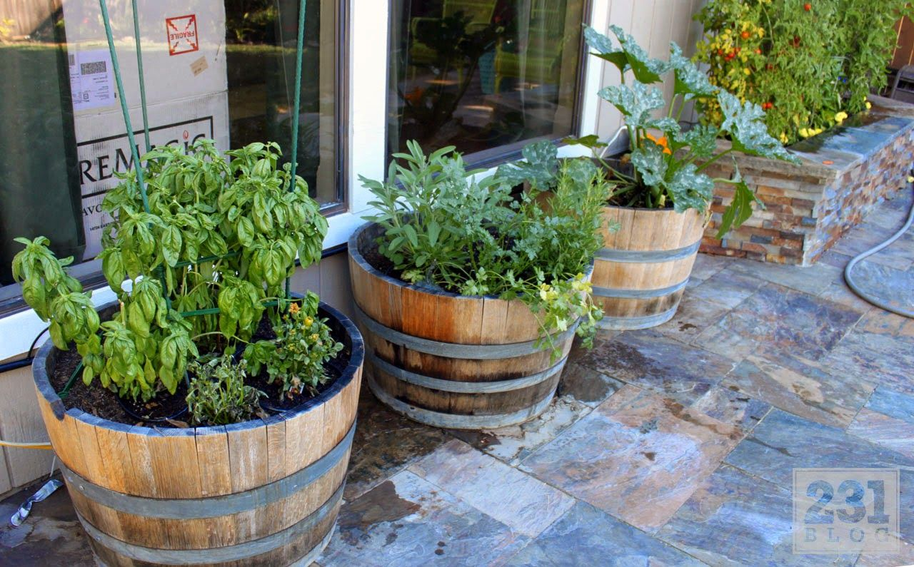 wine barrel container gardening Edible front yard Pinterest