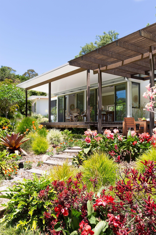 Pin On Tropical Gardening