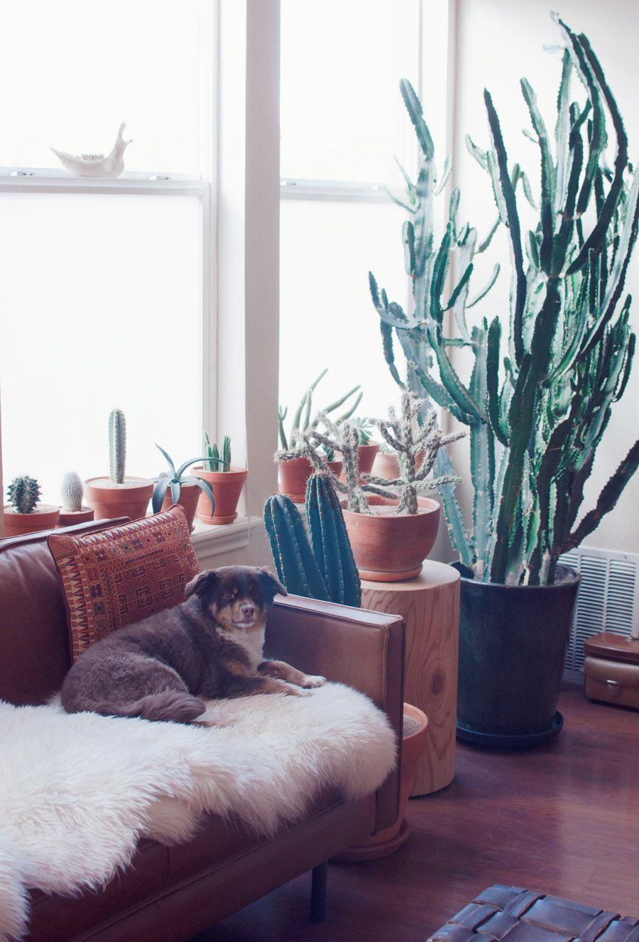 20 Blue Living Room Design Ideas: Check Out Stella Maria Baer's Southwestern Inspired Artist