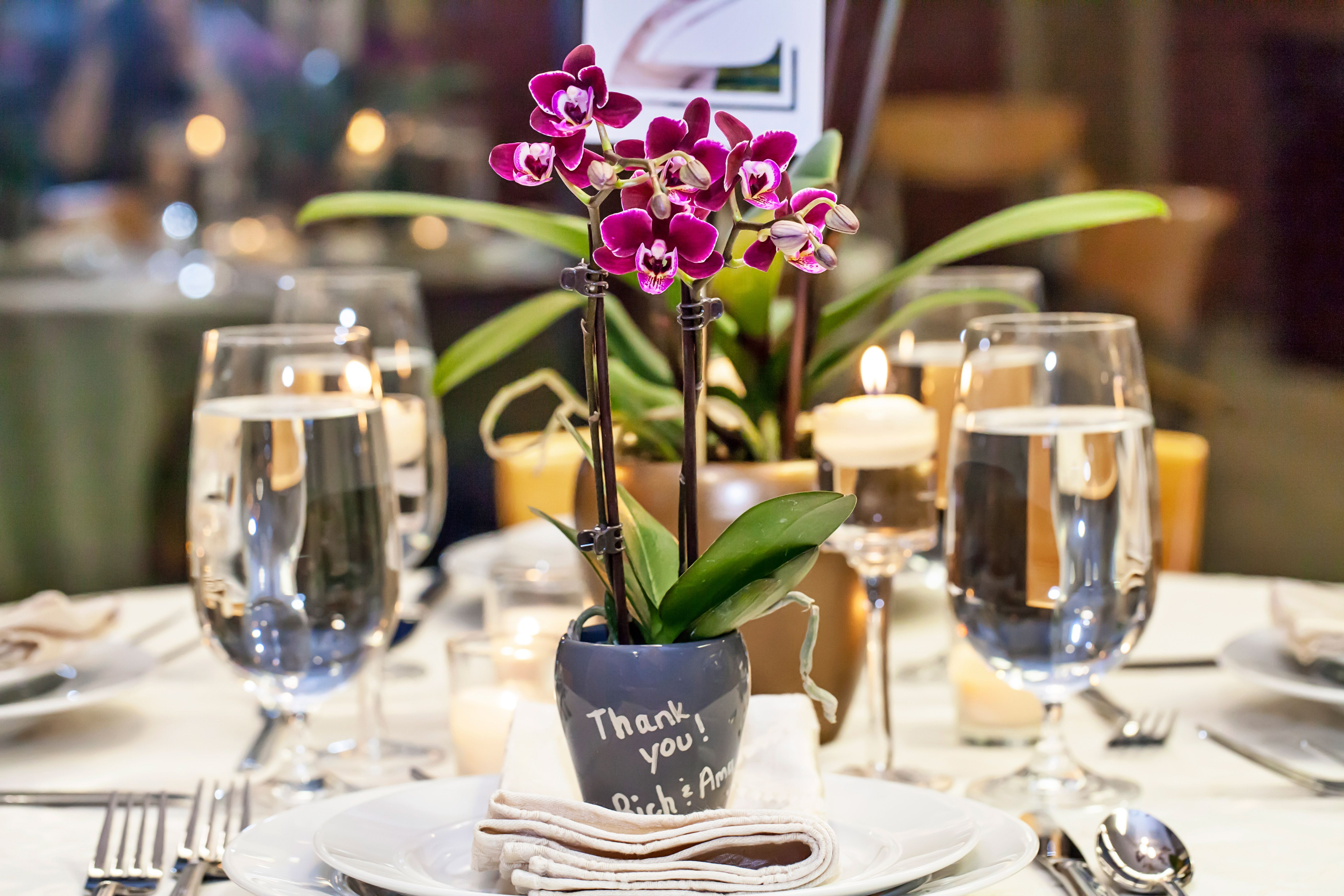 Giving Mini Orchids As Wedding Favors Leaves A Lasting Impression Wedding Favors Wedding Gifts For Guests Orchid Wedding