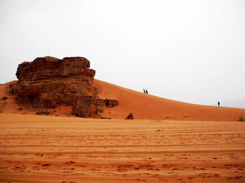 Wadi Rum, Jordanie (med bilder)