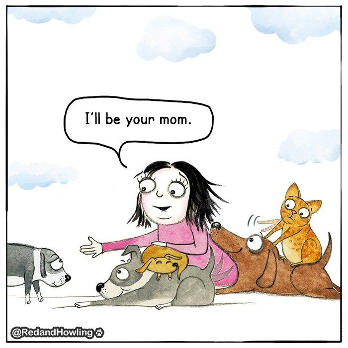 Moms Are The Best Dog Mom Crazy Dog Lady Dog Quotes