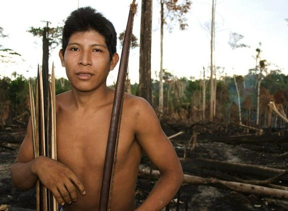 Awa Tribe of Brazil: Tribe Member and DevastationCredit: ©SurvivalHemokoma'á stands in smouldering forest in the Awá territory - 31% has been burned and destroyed by illegal invaders.