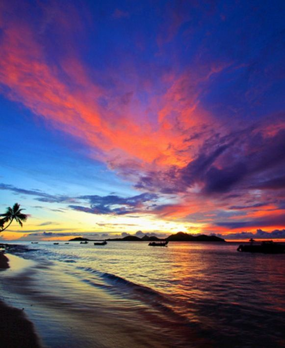 Fiji Beaches: Pin By Elizabeth Aralia On Countries Of The World