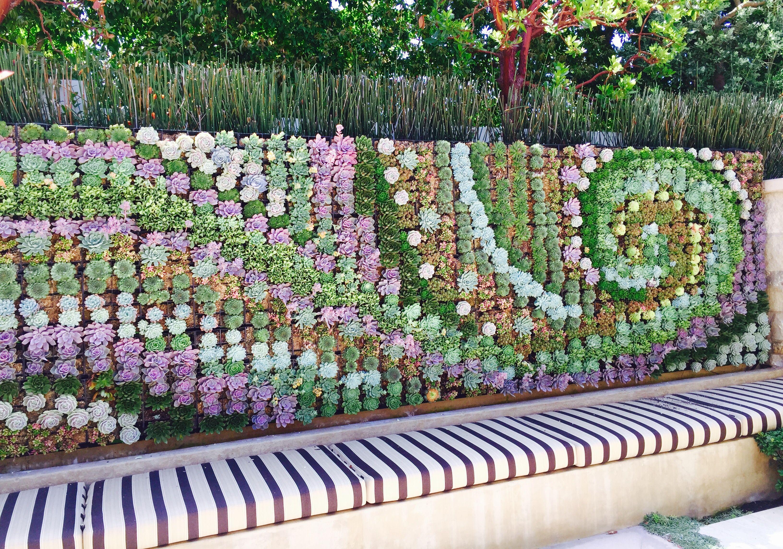 Succulent wall art u living room decor ideas pinteu