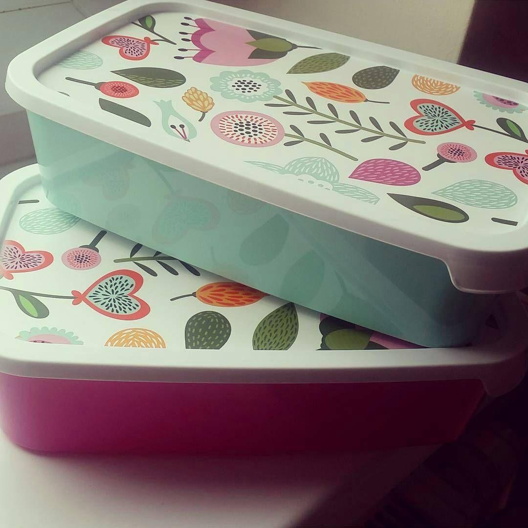Ania Rekawiecka On Instagram Takie Urocze Pudelka I To W Cenie Jak Z Pepco Cute Lunchbox Box Pudelko Colours Kolory Kw Instagram Posts Instagram