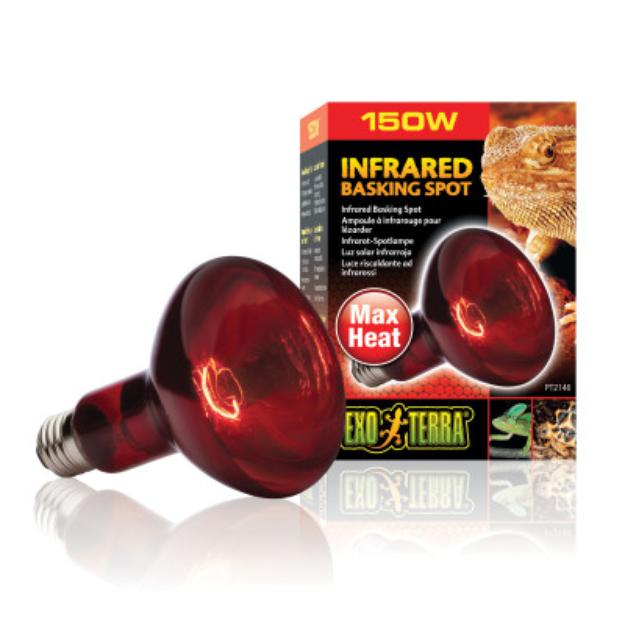 Rc Hagen Pt2146 Exo Terra Heat Glo Infrared Spot Lamp 150w 120v Reviews Q A Heat N Glo Heat Lamps Bulb