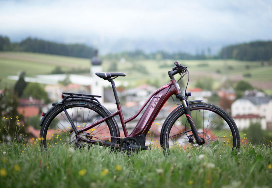 Want To Know More About Liv Electric Bikes Here Is The Owners