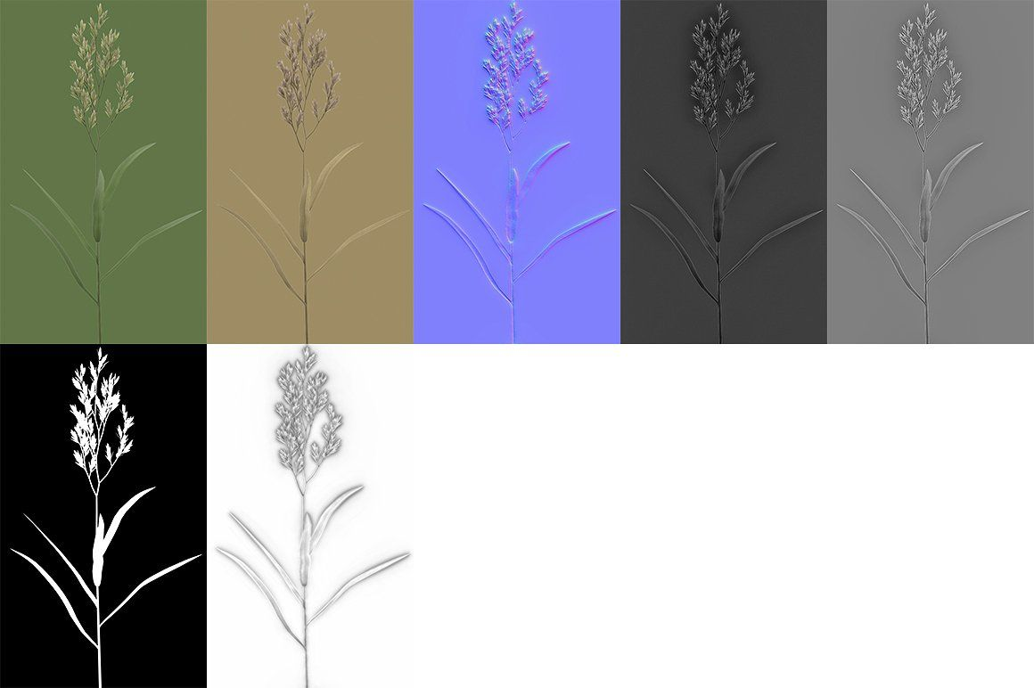 Blade of grass #exteriors#texture#projects#visualization | Branding