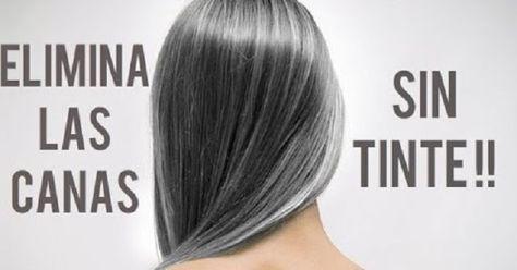 35+ Como tapar canas sin tenir el pelo inspirations