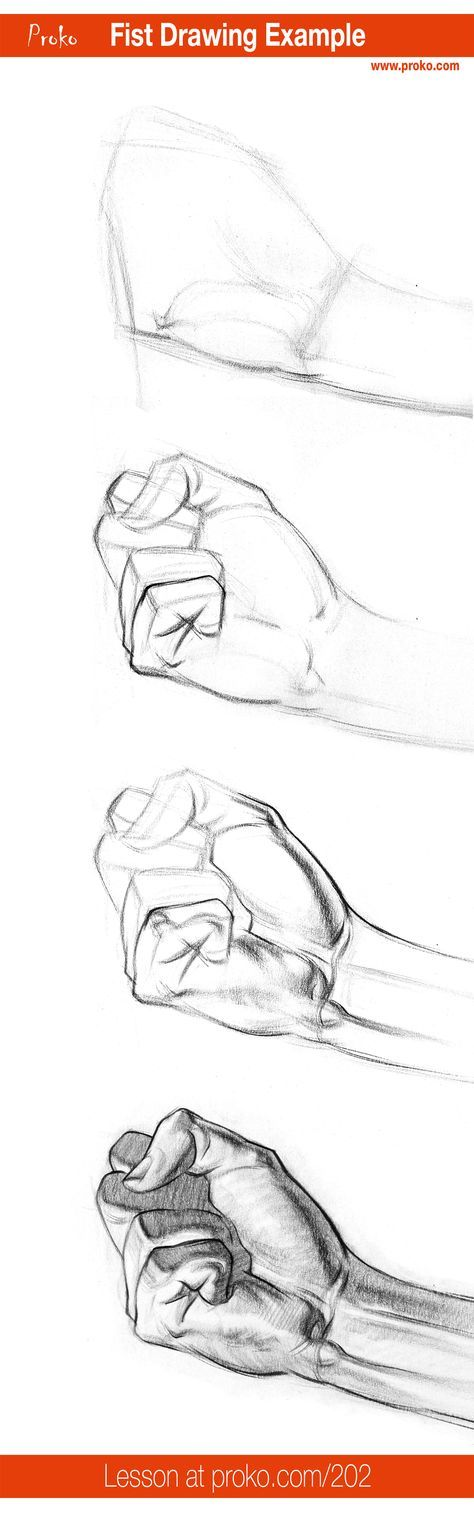 How to Draw a Fist – Hand Drawing Example | Pinterest | Anatomy ...