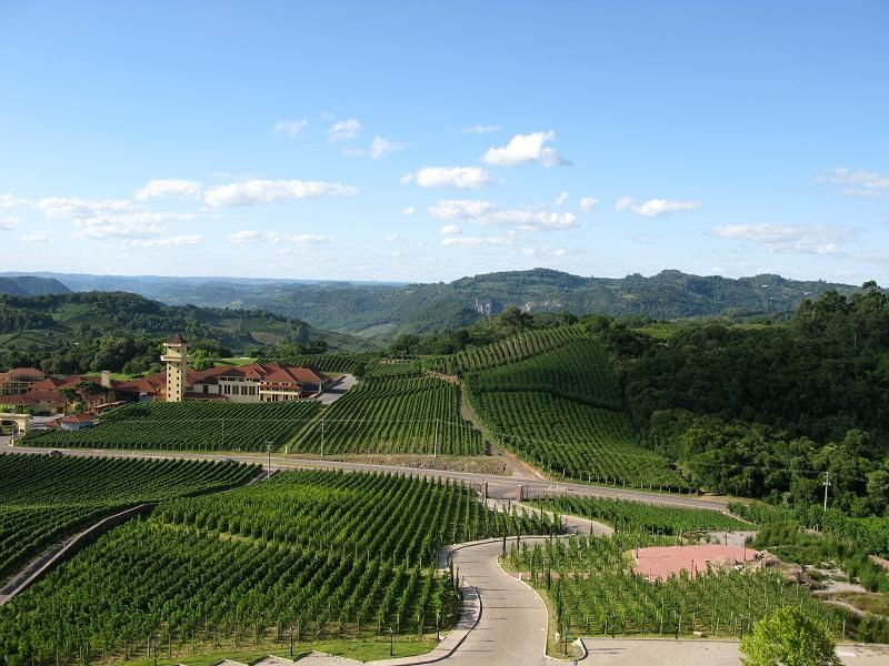 The city of Bento Gonçalves, the hub of Brazil's wine country,