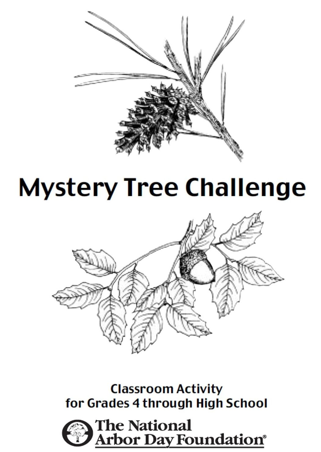 This Mystery Tree Challenge Is A From The Arbor Day
