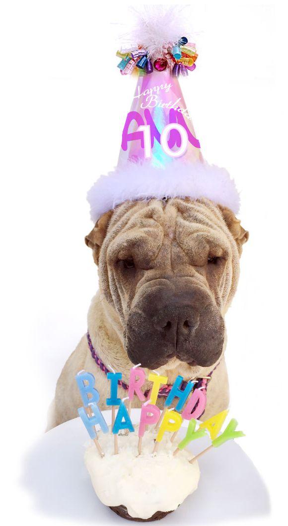 Открытки с днем рождения с шарпеем, оленьки картинка надписью