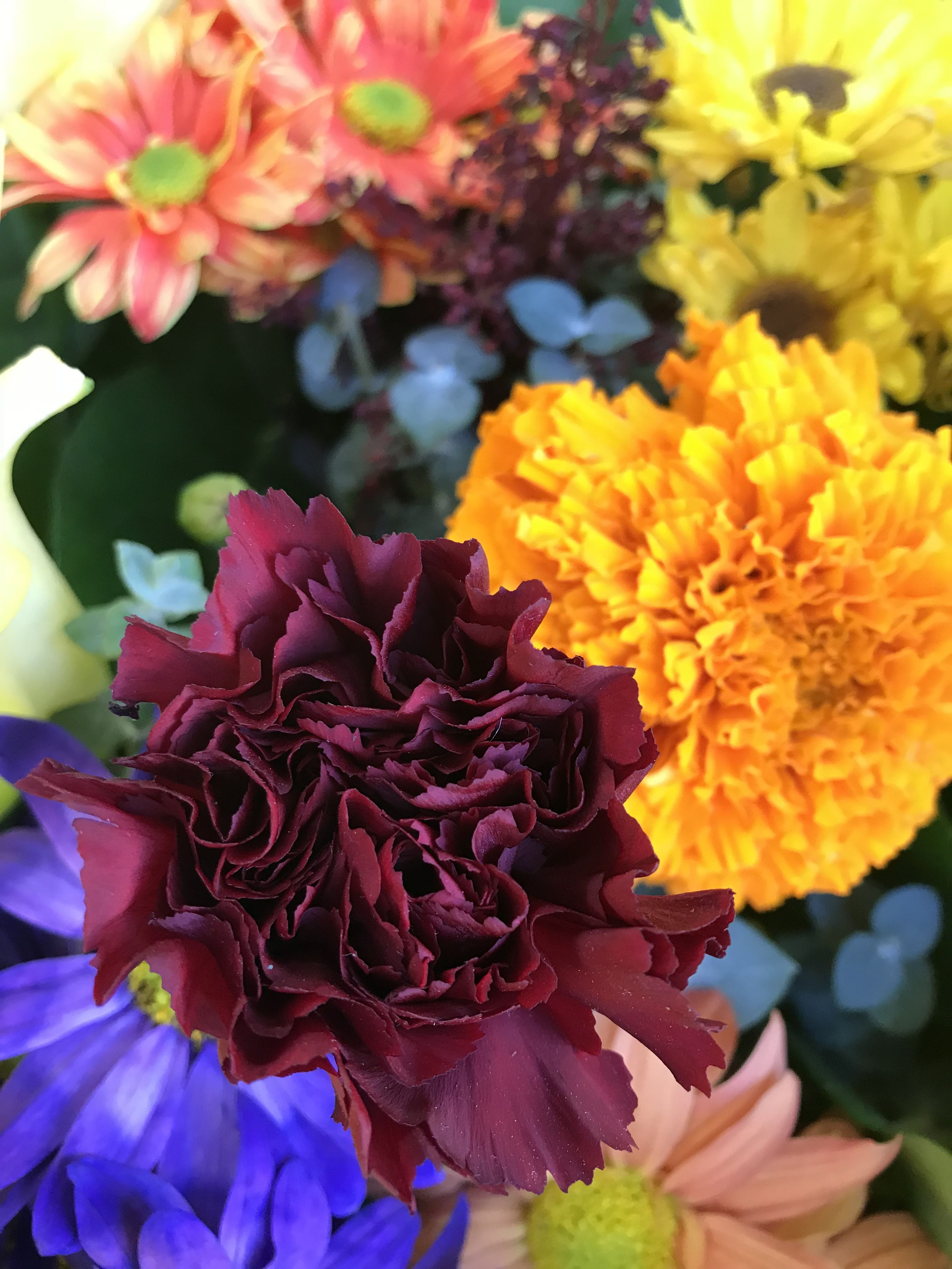 los angeles flower market downtown