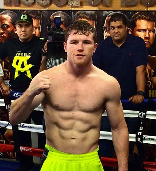 Lo Mejor De Canelo álvarez Saul Canelo Alvarez Shirtless Men Boxing Images