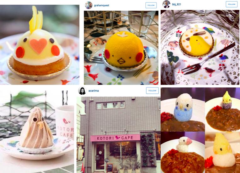 Kotori Cafe Omotesando Bird Cafe With Epic Bird Theme Food Https Www Facebook Com Kotoricafe2014 Timeline