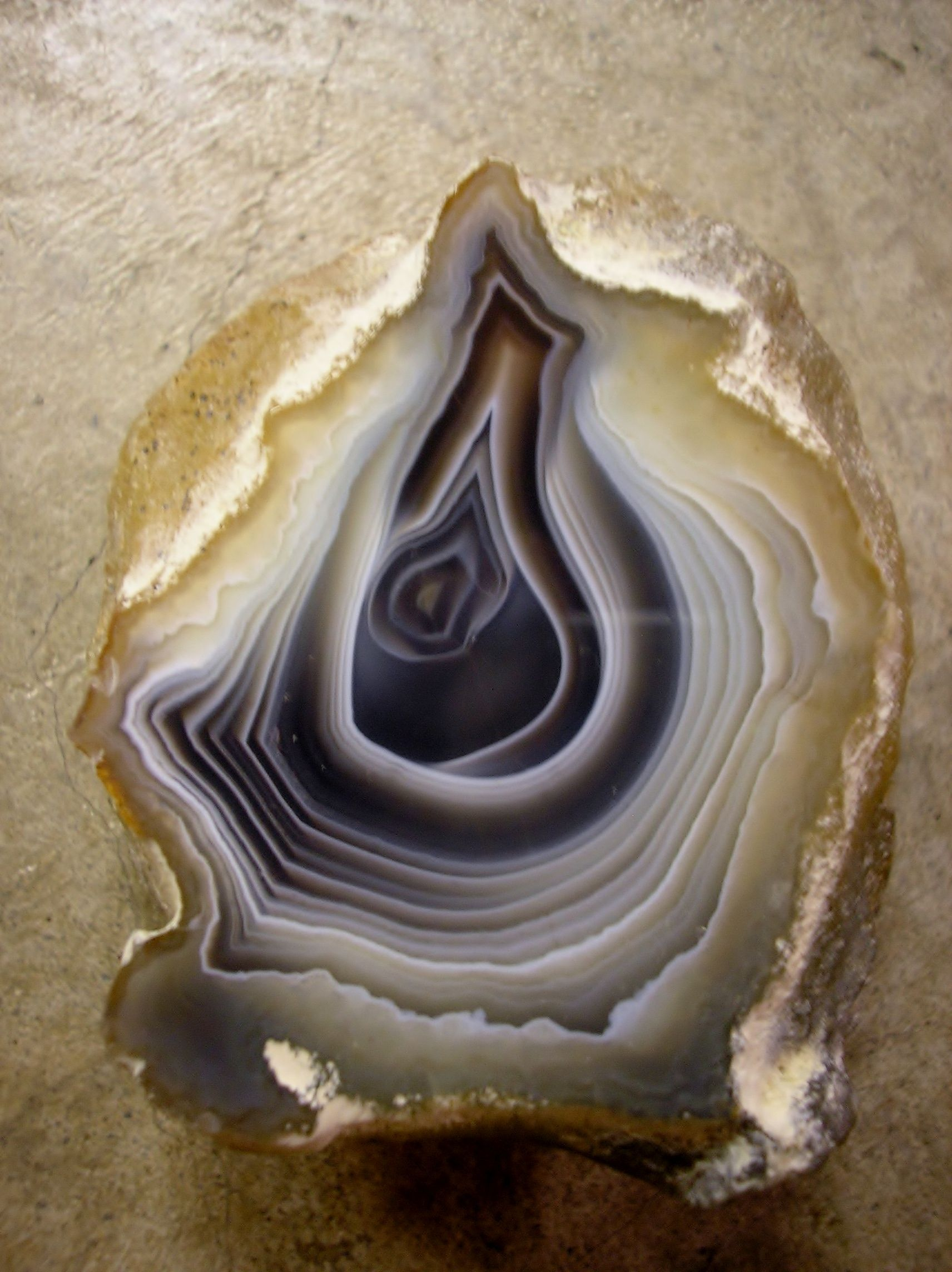 Slice Of Botswana Agate I Cut And Polished Rocks Of The