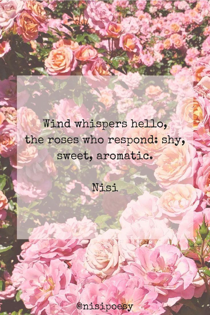 Exposition Park Rose Gardens Novels Pinterest Garden Poems And