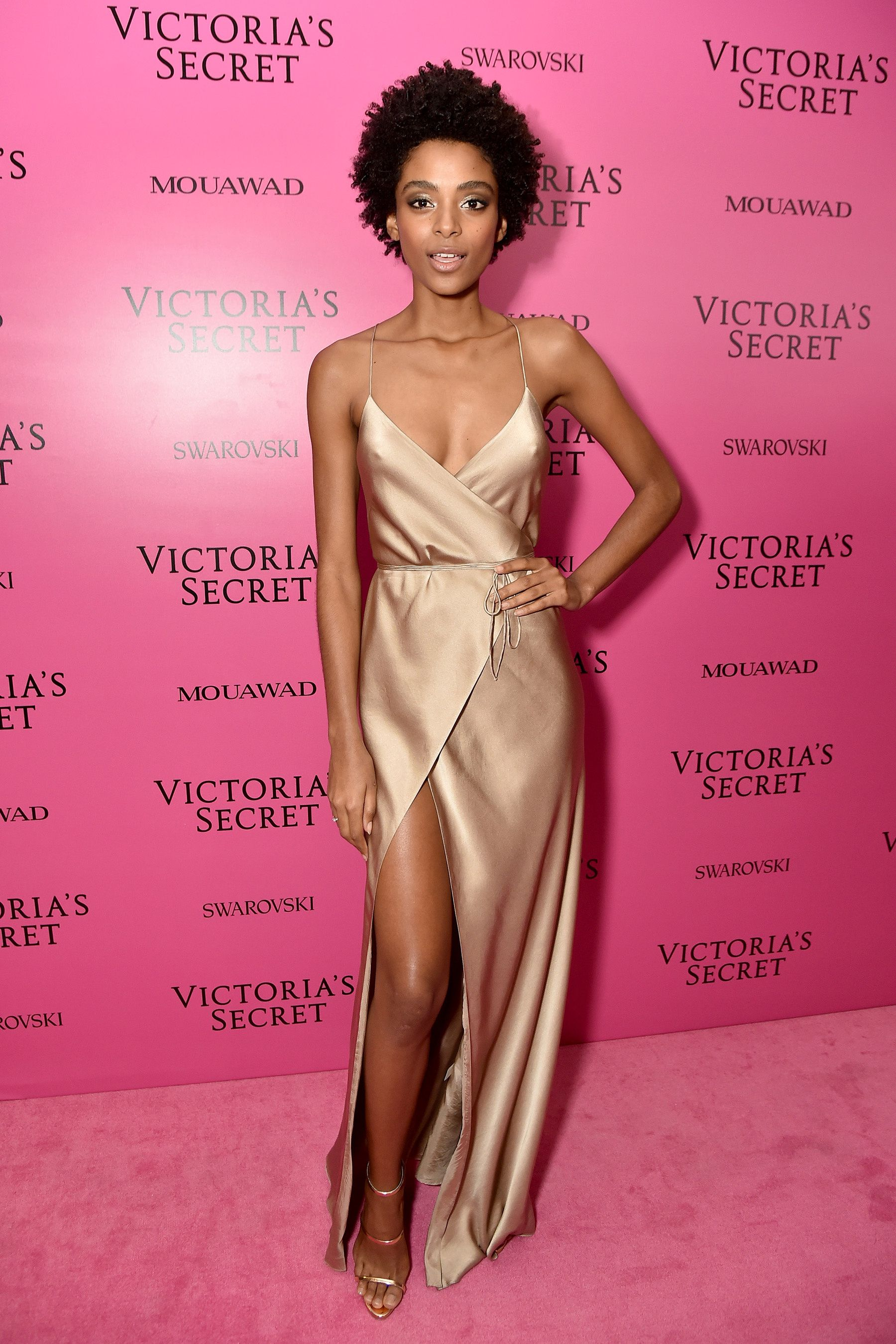 La fiesta de Victoria\'s Secret 2017 | Red carpet, Pink carpet and Gowns