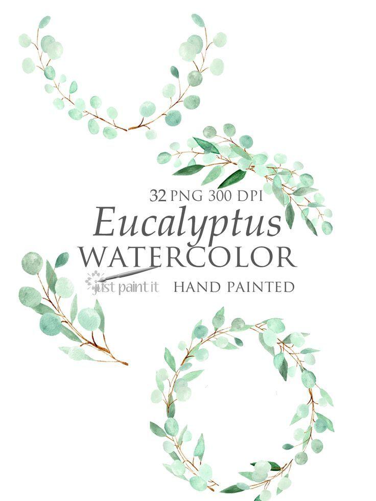 Eucalyptus watercolor clipart watercolor greenery wreaths