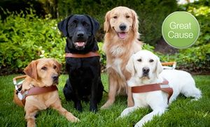 Grassroots Guide Dogs For The Blind Guide Dog Guide Dog