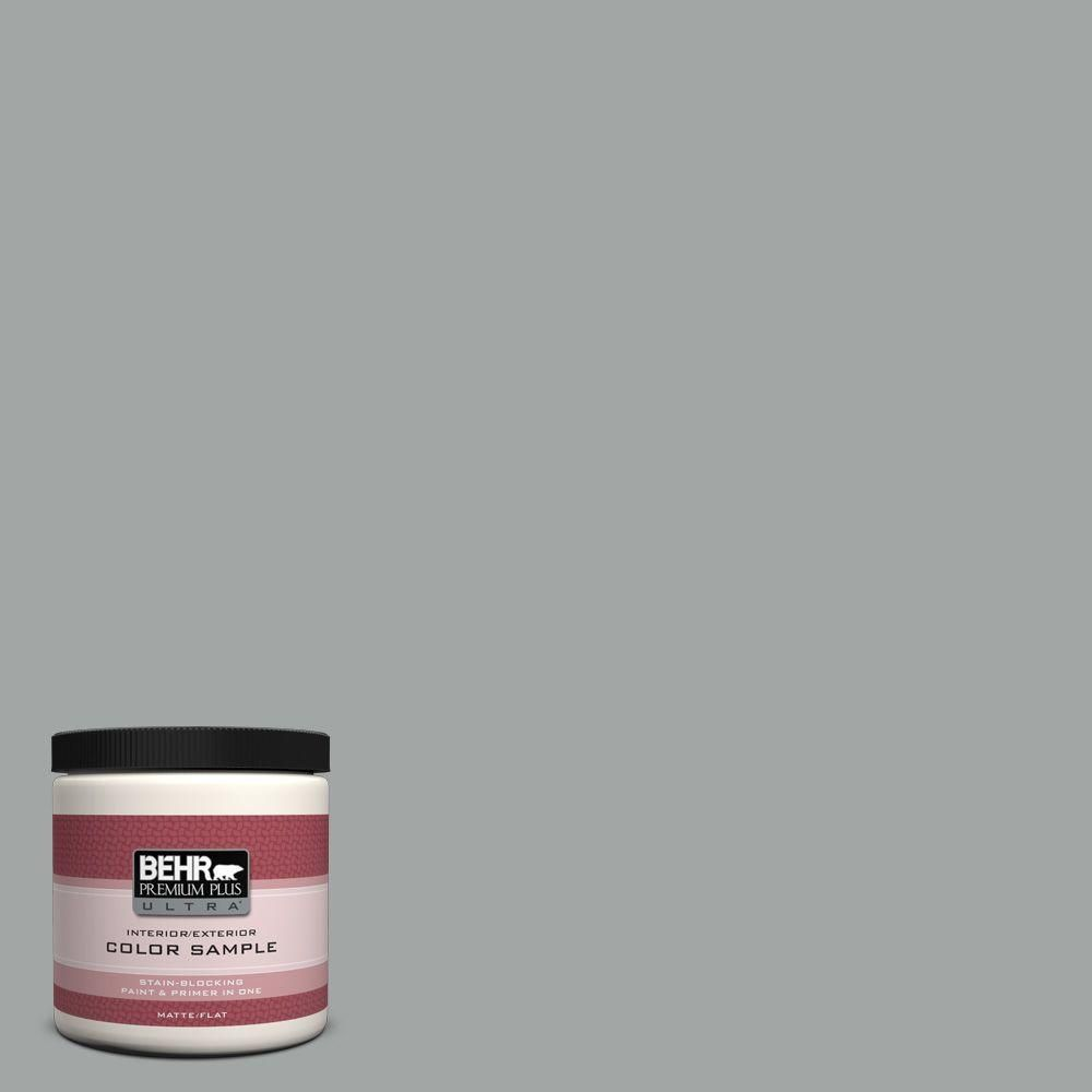 BEHR Premium Plus Ultra 8 oz. #PPU25-04 Sharkskin Suit Interior/Exterior Flat Paint Sample
