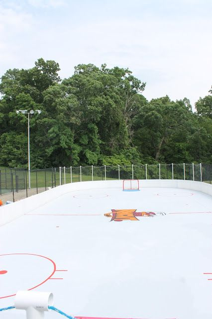 Paint Speckled Pawprints: A Roller Hockey Rink Reveal (HoH154)