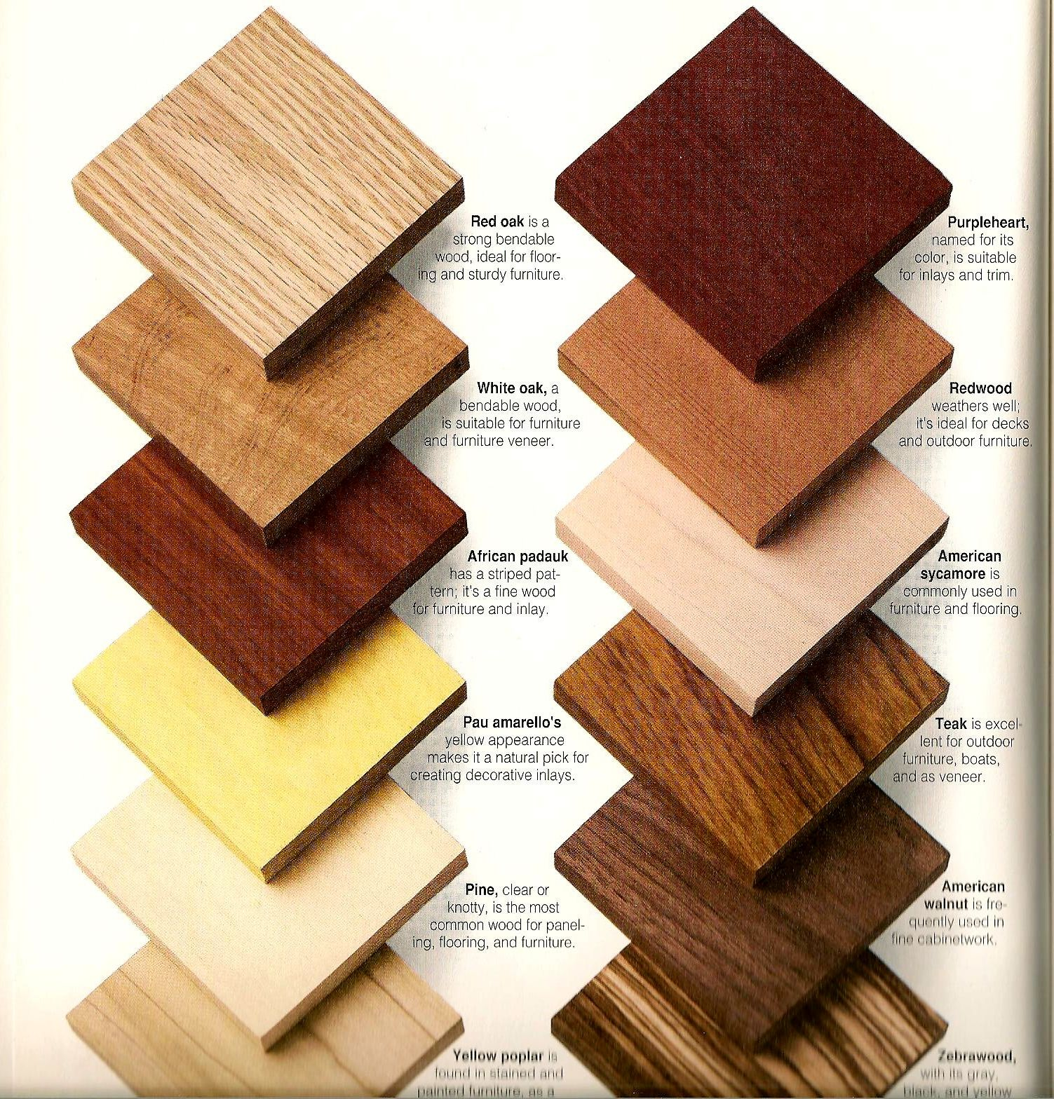 Wood Types   Samples for Client Reference. Wood Types   Samples for Client Reference   Custom Furniture