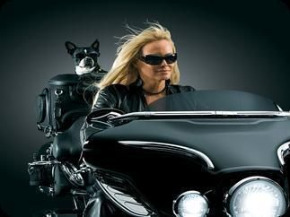 The Pet Palace Motorcycle Pet Carrier 150 Pet Carriers Pets