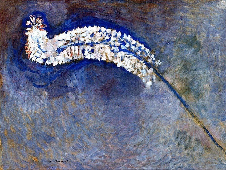 Piet Mondrian - Foxtail lily - 1909