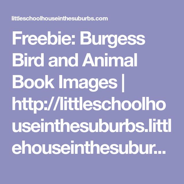 Freebie: Burgess Bird and Animal Book Images | Animal book ...