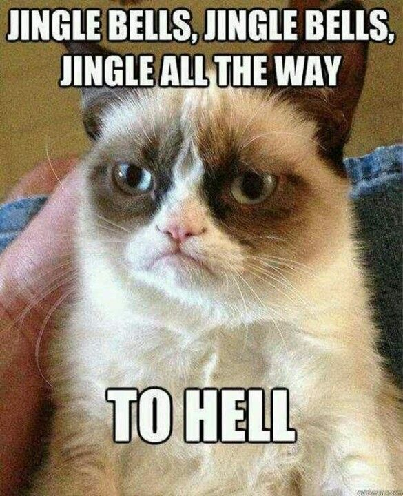 Christmas Hater.Grumpy Cat Being A Christmas Hater Funny Funny Ha Ha