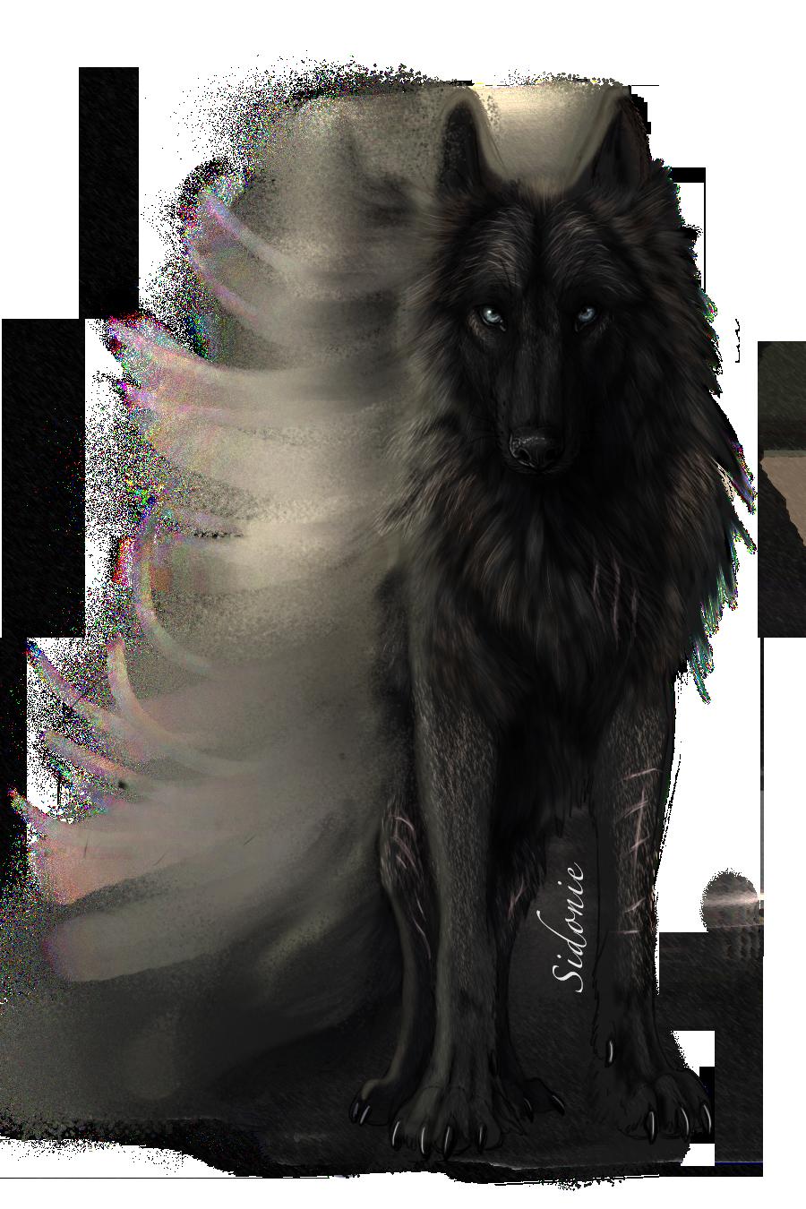 Wolves 500 Ideas On Pinterest Beautiful Wolves Wolf Spirit Wolf Love