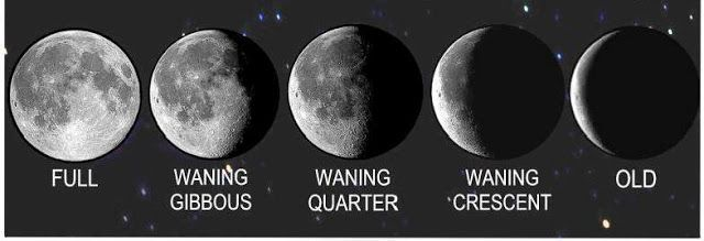 Moon In The 7th House Vedic Astrology