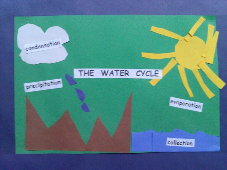 Water Cycle For 2nd Grade Water Cycle Activity Second