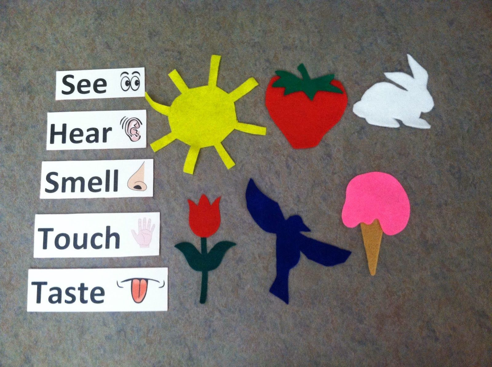 Library Storytime 5 Senses Books Songs Flannelboard Senses Stations