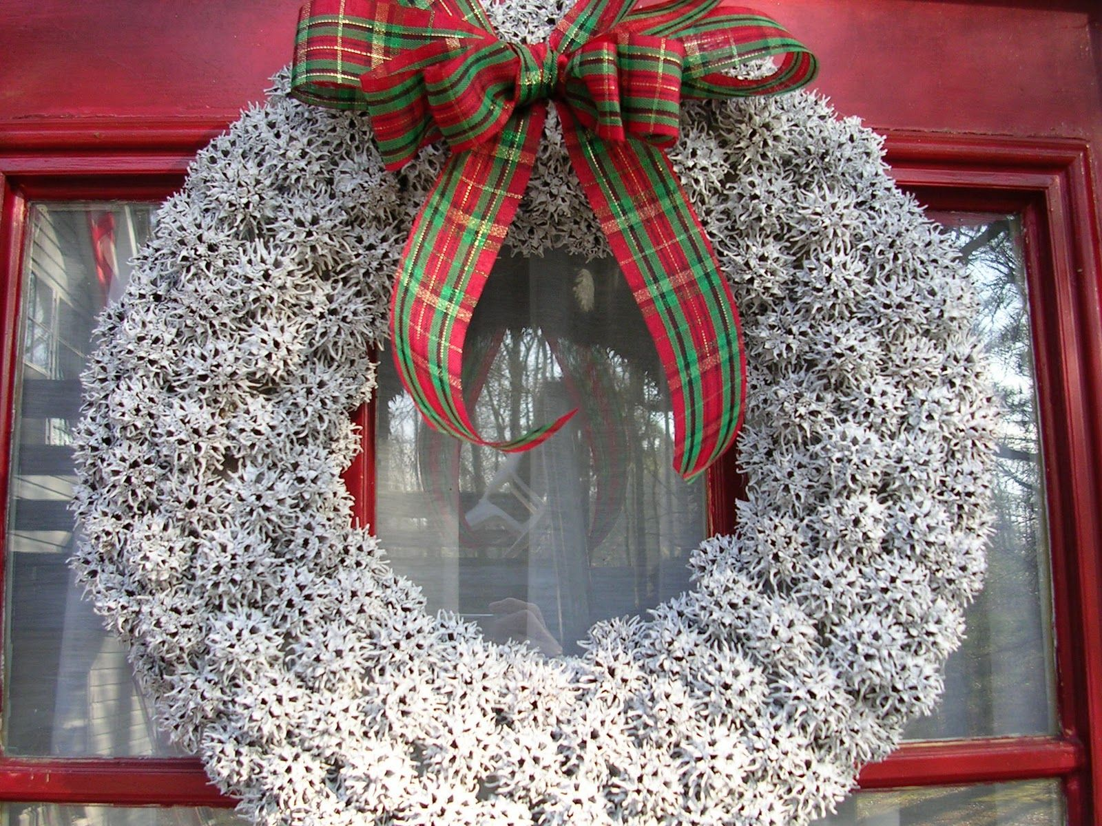 Sweet Gum Wreath Christmas Crafts Decorations Sweet Gum Tree